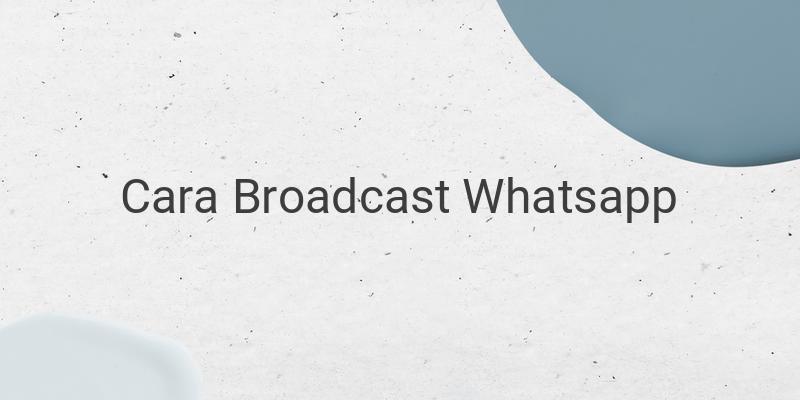Cara Mengirim Pesan Broadcast Whatsapp